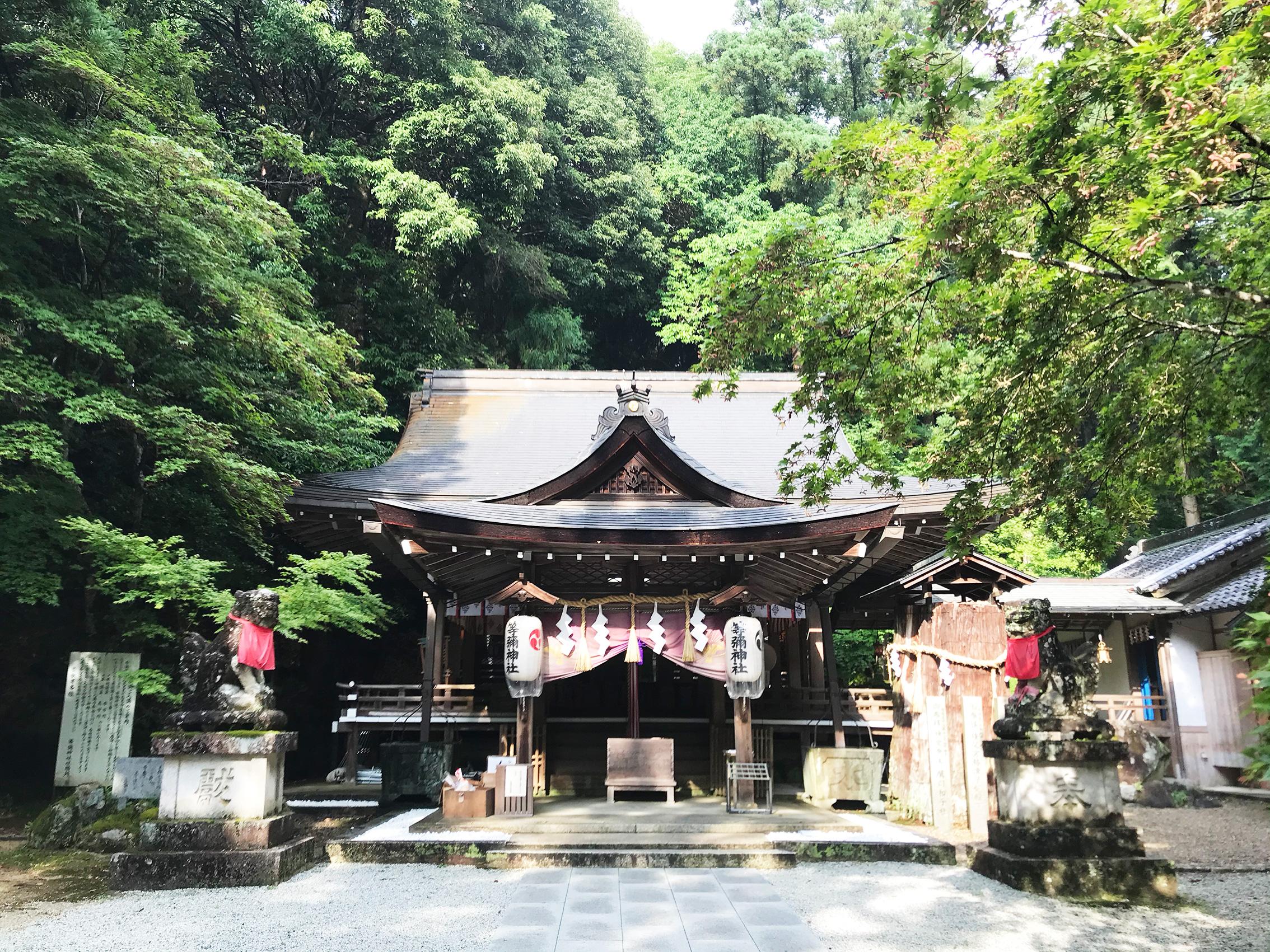 夏の神社で瞑想会が終わりました(2020/06/26)